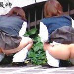 【盗撮】学校帰りの女子校生たちは尿意を催すと連れションするらしので確認した結果♪