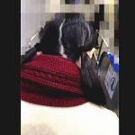 【盗撮動画】通学電車内で初めての痴漢体験にちょっぴり涙ぐんでる可哀想なツインテールの女子校生♪