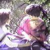 【盗撮】真昼間の公園の片隅で野外セックスかと思いきや彼女が野外オナニーしてる変態カップル♪