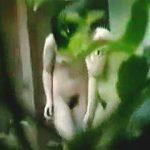 【盗撮】温泉露天風呂で湯気とマン毛のコラボレーション入浴してる妖艶ボディの女子たち♪