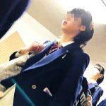 【盗撮動画】間違いなくJKジャンルど真ん中にいる女子校生の清純で無垢なパンチラに大興奮♪