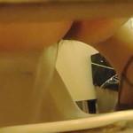 【無修正】前派も後派もオシッコ派もウンコ派も満遍なく楽しめる女子トイレ風景♪