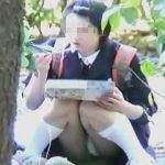 【盗撮】公園でお弁当食べながらM字パンチラ晒してる女子校生がオレたちのオカズになってる件♪
