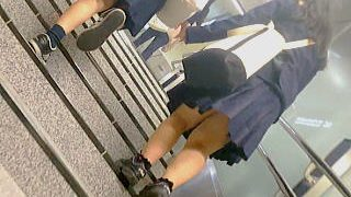【盗撮動画】駅の階段を手をつないで上る仲良し女子学生たちにオジサンはほっこりモッコリ♪